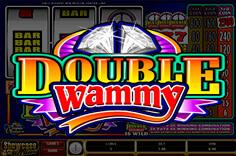 https://playfortuna2021.click/wp-content/uploads/2019/04/double-wammy-150x150.jpeg