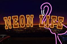http://playfortuna2018.com/wp-content/uploads/2019/04/neon-life-150x150.jpeg